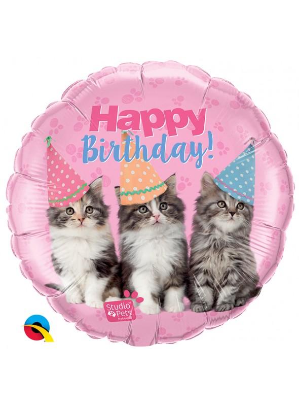 Balão Metalizado Aniversário com Gatos 18 Polegadas 46cm Qualatex
